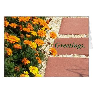 Yellow Orange Marigold Flowers Greeting Cards