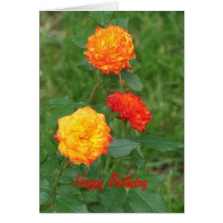 Yellow &  Orange Roses, Special Birthday Card