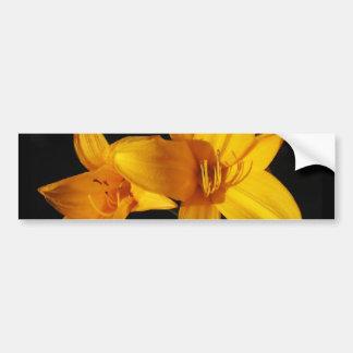 Yellow Orchid Bumper Sticker