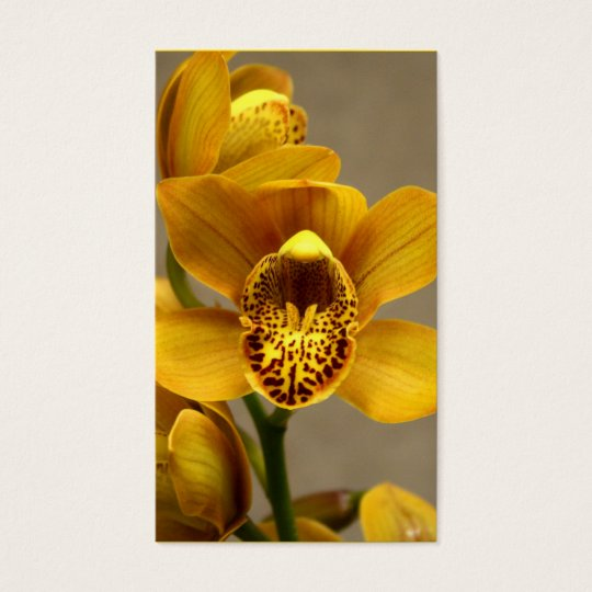 Yellow Orchid business cards