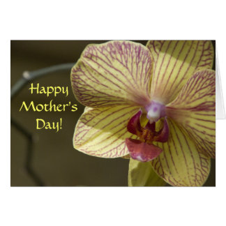 Yellow Orchid Mothers Day Card