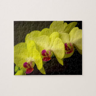 Yellow Orchid - Photo Puzzle