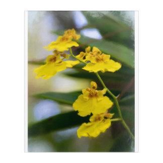 "Yellow Orchids Acrylic Wall Art, 16"" x 20"" Acrylic Wall Art"