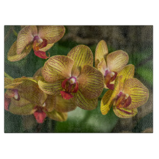 Yellow orchids glass cutting board