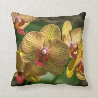 Yellow orchids up close throw cushion