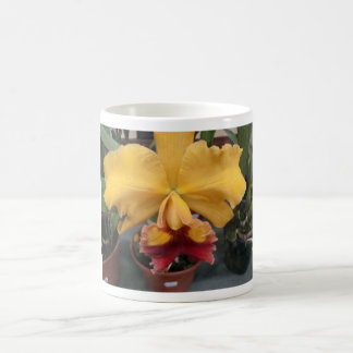 Yellow Orquidea Coffee Mug