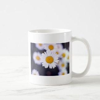 Yellow Ox-Eye Daisy Leucanthemum Vulgare flowers Coffee Mug