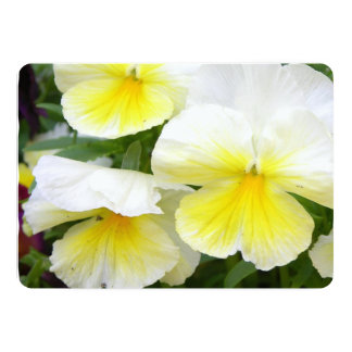 Yellow Pansies 13 Cm X 18 Cm Invitation Card