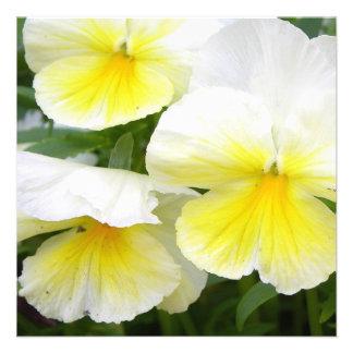 Yellow Pansies Invitations