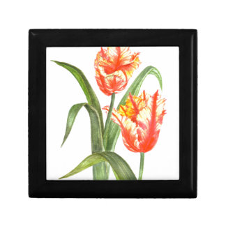 Yellow Parrot Tulips Flower Floral Art Gift Box