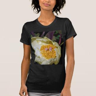 Yellow Peony Rose Tee Shirt