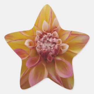Yellow Petal Star Sticker
