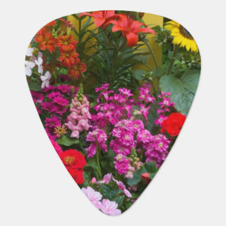 Yellow picket fence with flower garden in guitar pick