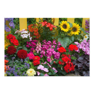 Yellow picket fence with flower garden in photo art