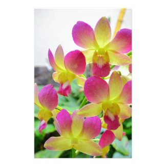 Yellow Pink Orchids Stationery