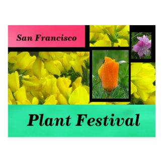 Yellow Plant Festival Postcard