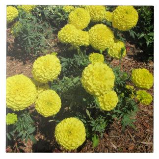 Yellow Pompom Marigolds Garden Plants Tiles