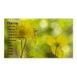 Yellow Poppies Photo Pack Of Standard Business Cards