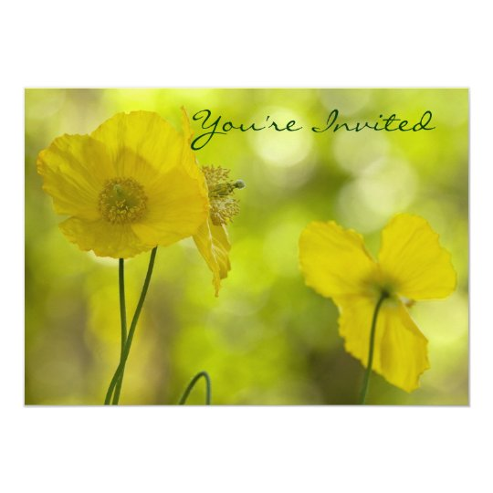 Yellow Poppies Photo Card