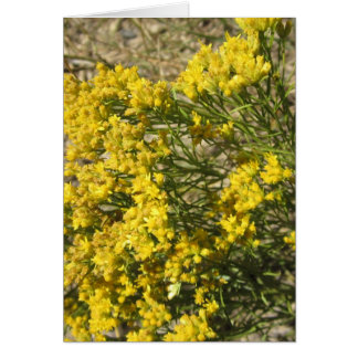 Yellow Prairie Wildflower Card