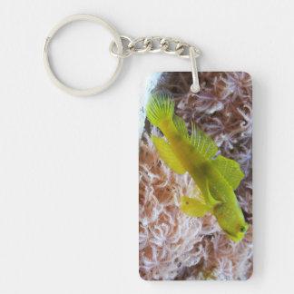 Yellow prawn-goby Double-Sided rectangular acrylic key ring