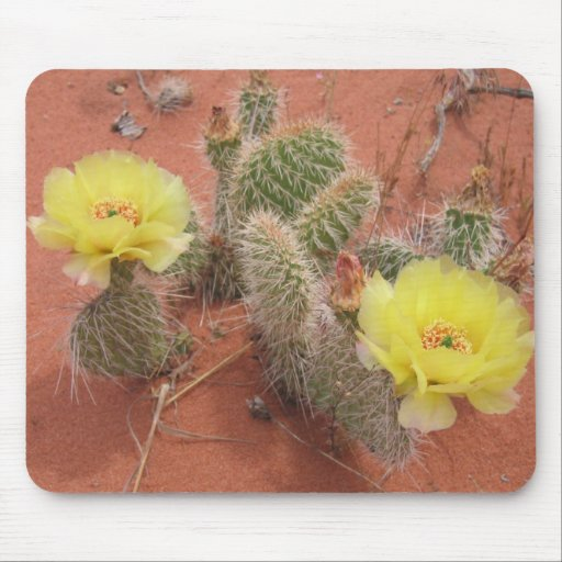 Yellow Prickley Pear cacti Mouse Pads