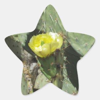 Yellow Prickly Pear Blossom Star Sticker