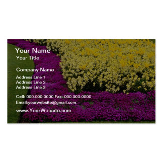 yellow Rainbow flowerbeds flowers Business Card Template