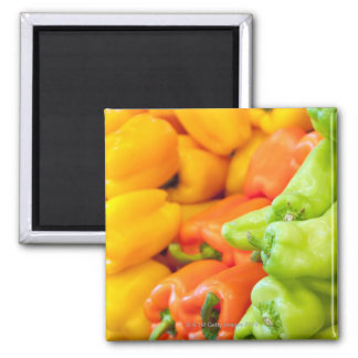 Yellow, red and green pepper on sale at farmer's square magnet