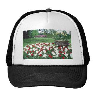 Yellow Red and white tulips, Kew Gardens flowers Trucker Hat