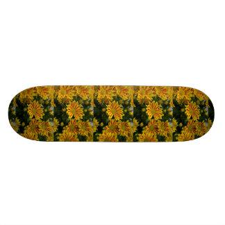 yellow - red Artotis flowering, photo extrudes, Skateboard Decks