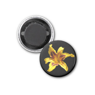 Yellow & Red Lily Magnet