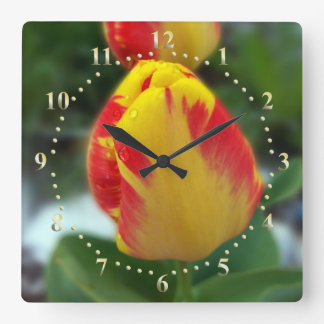 yellow red tulips square wall clock