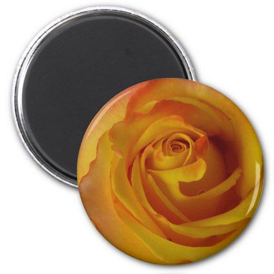 yellow rose bud 6 cm round magnet