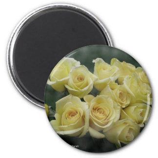 Yellow rose bunch, dark background refrigerator magnets