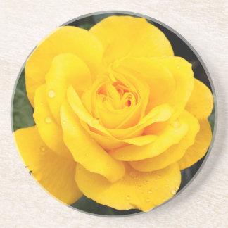 Yellow Rose Coaster