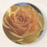 Yellow rose drink coasters