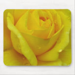 Yellow rose mouse pads
