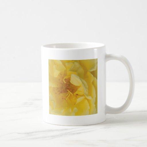 Yellow rose mug