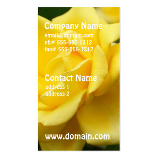 Yellow Rose of Texas Double-Sided Standard Business Cards (Pack Of 100)