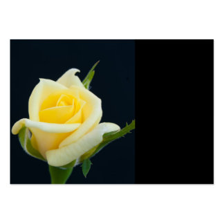Yellow rose on the black background business cards