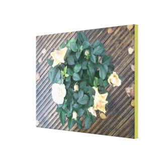 Yellow Rose Photo 2 Canvas Print