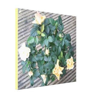 Yellow Rose Photo Canvas Print