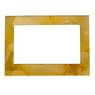 Yellow Rose Picture Frame