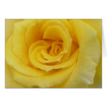 Yellow Rose Stationery Note Card