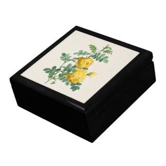 Yellow Rose vintage botanical illustration Gift Box