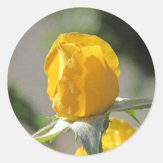 Yellow Rosebud Round Sticker