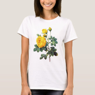 Yellow Roses by Pierre Joseph Redoute T-Shirt