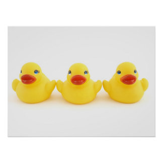 Yellow Rubber Ducks Poster