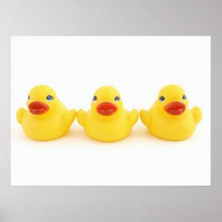 Yellow Rubber Ducks Poster